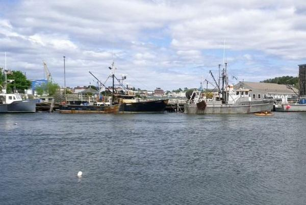 Fishing boats in the harbor in Portsmouth. Shareholders in a new Community Supported Fishery will have opportunities to meet the fishermen who catch their fish.