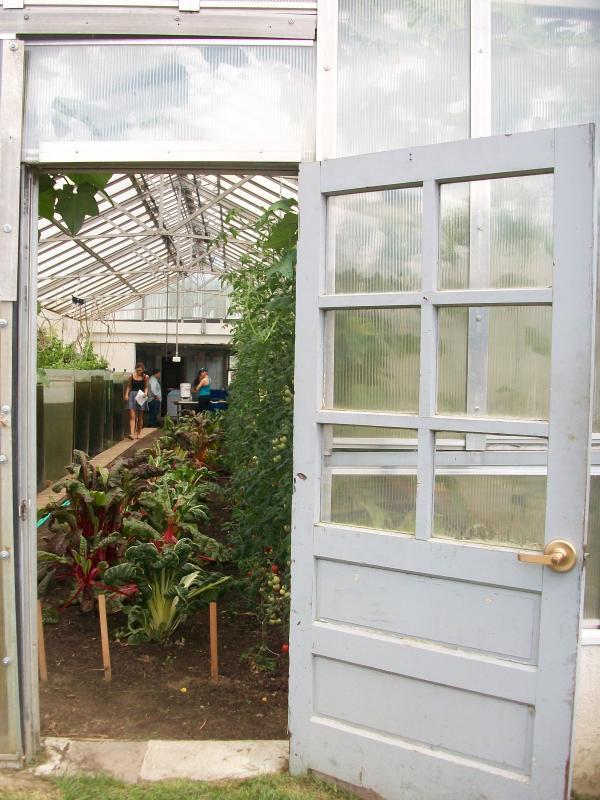 The greenhouse at Dartmouth College's organic farm.