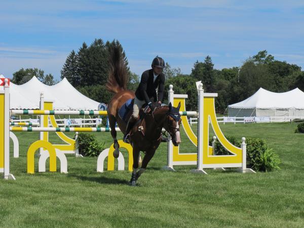 A rider clears a hurdle at Hampton Falls Show Jumping Tournament