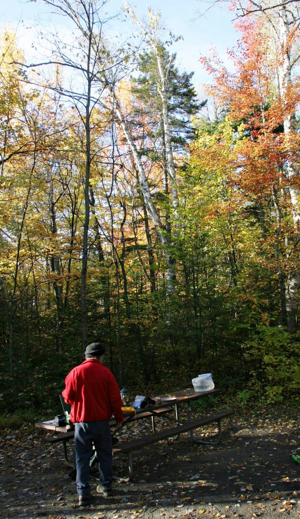 Folks who figured on spending Columbus Day weekend at campgrounds in The White Mountain National Forest won't be able to do so. The campgrounds will close Thursday.