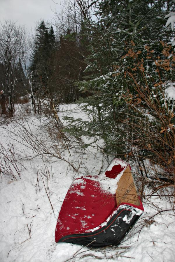 When the sleigh flipped on a turn tourists, coats, hats and a seat were thrown out. Photo by Chris Jensen for NHPR