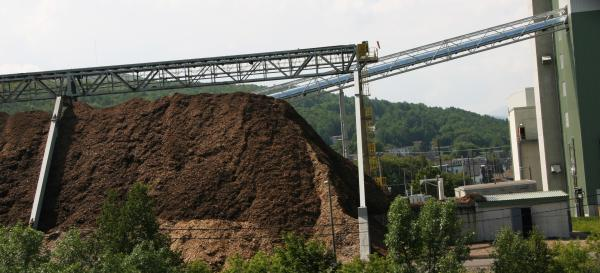 The plant is expected to buy about 750,000 tons of wood chips a year from timber owners.