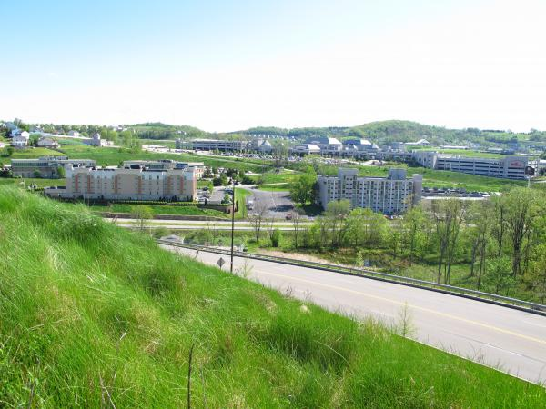 Seven hotels have popped up along Racetrack Rd in North Strabane, PA, since The Meadows opened in 2007.  Three more are on the way.
