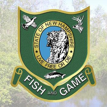 Fish and game reports bear deer hunting numbers new for Game and fish forecast