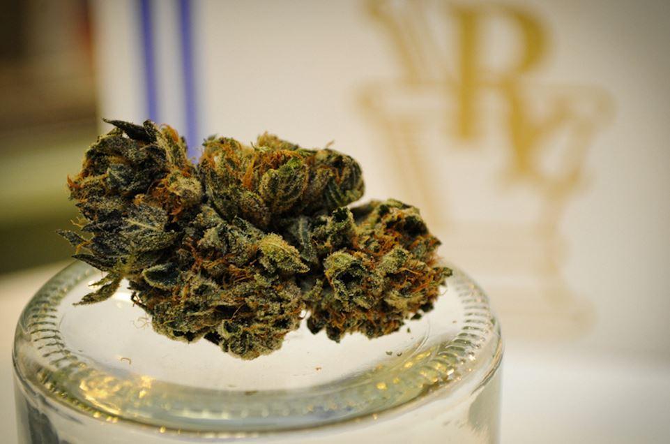 Marijuana / Pot / Cannabis candy chocolate wafer mold - Medical Marijuana THC safety symbol