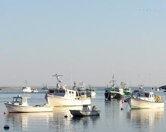 Recreational fishing companies say new restrictions are for Al gauron fishing