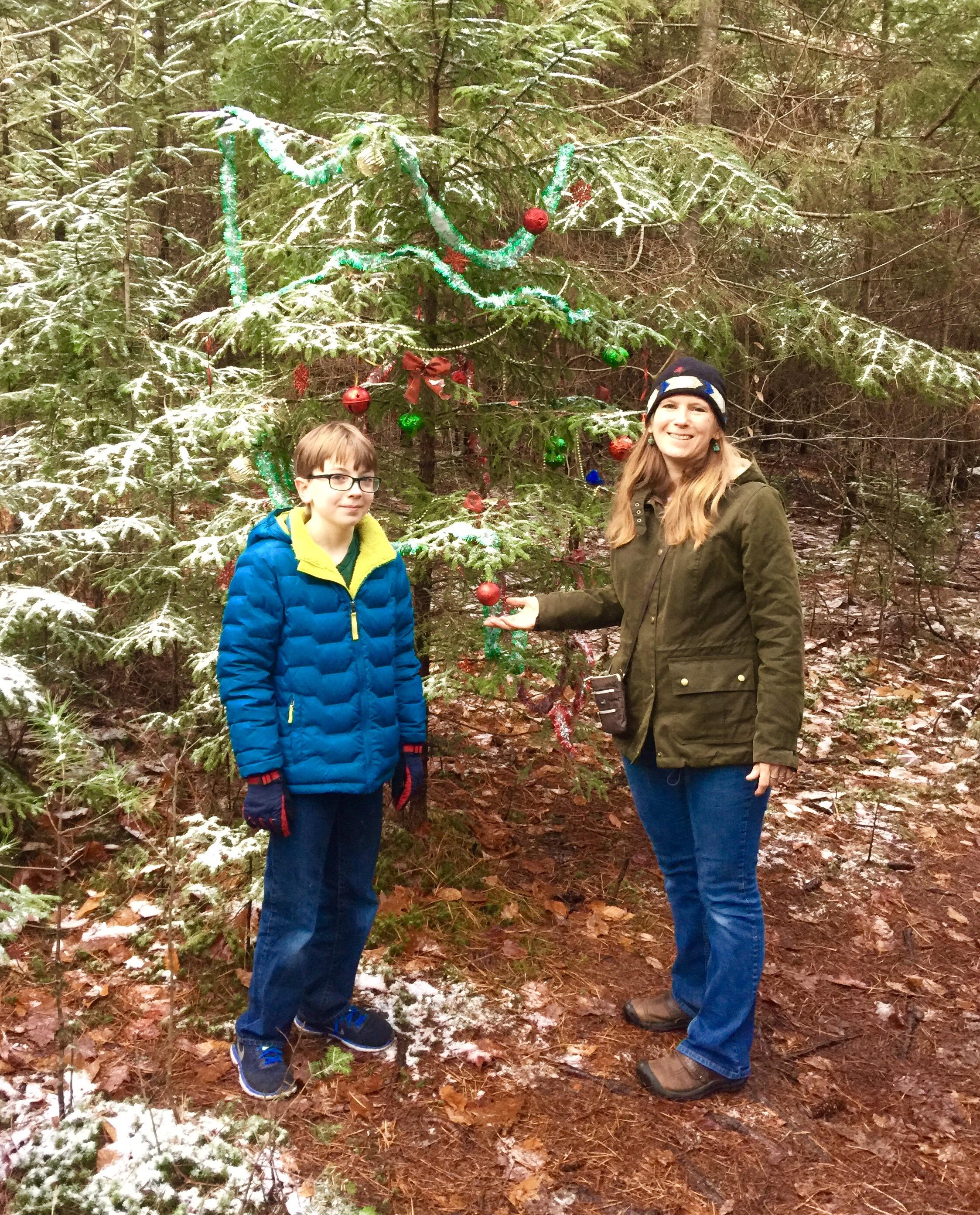 People Decorating A Christmas Tree in new hampshire, decorating christmas trees in the woods is a