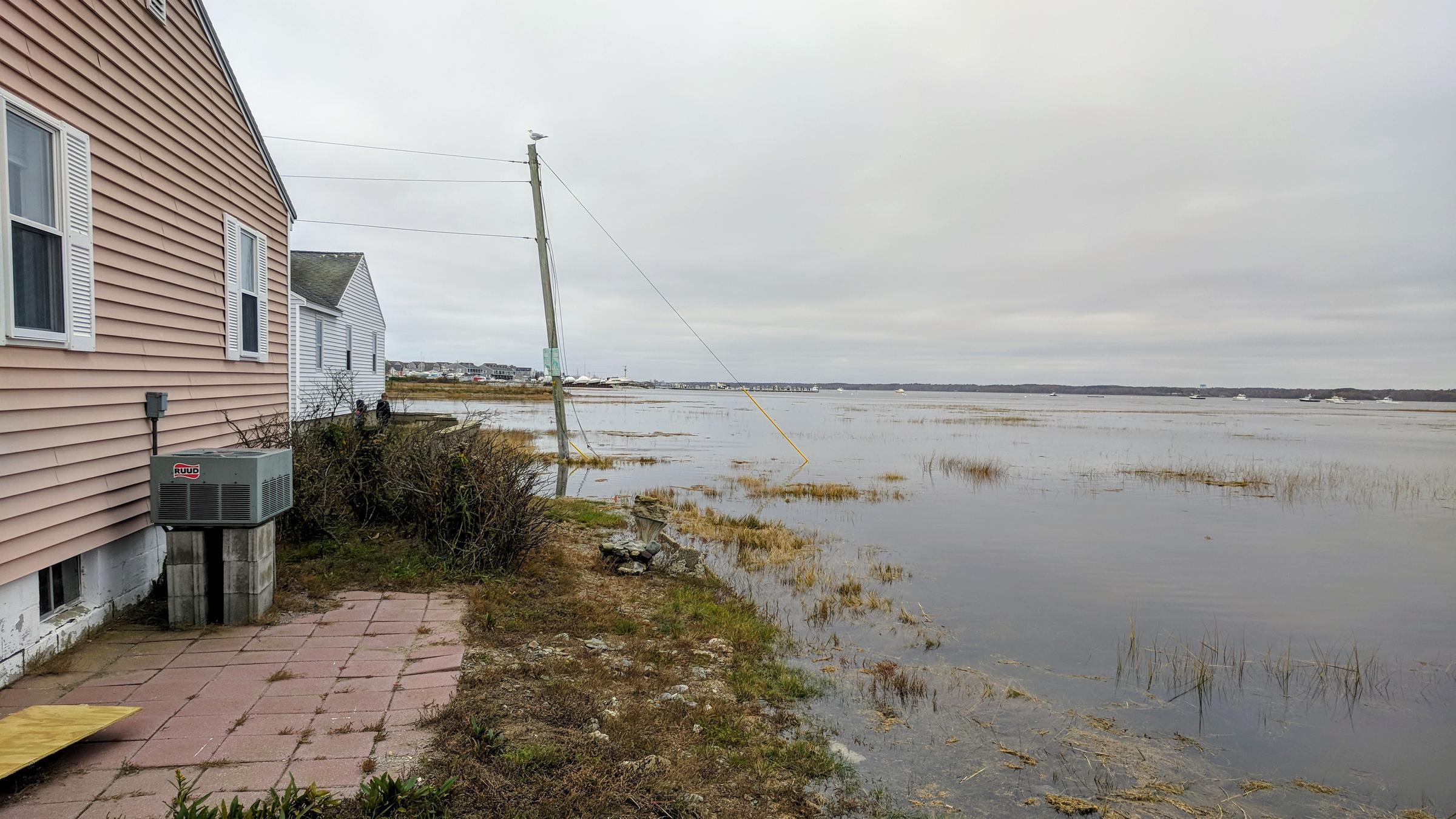 With king tide nhs coast gets a preview of higher seas future the end of hobson avenue in hampton nvjuhfo Image collections