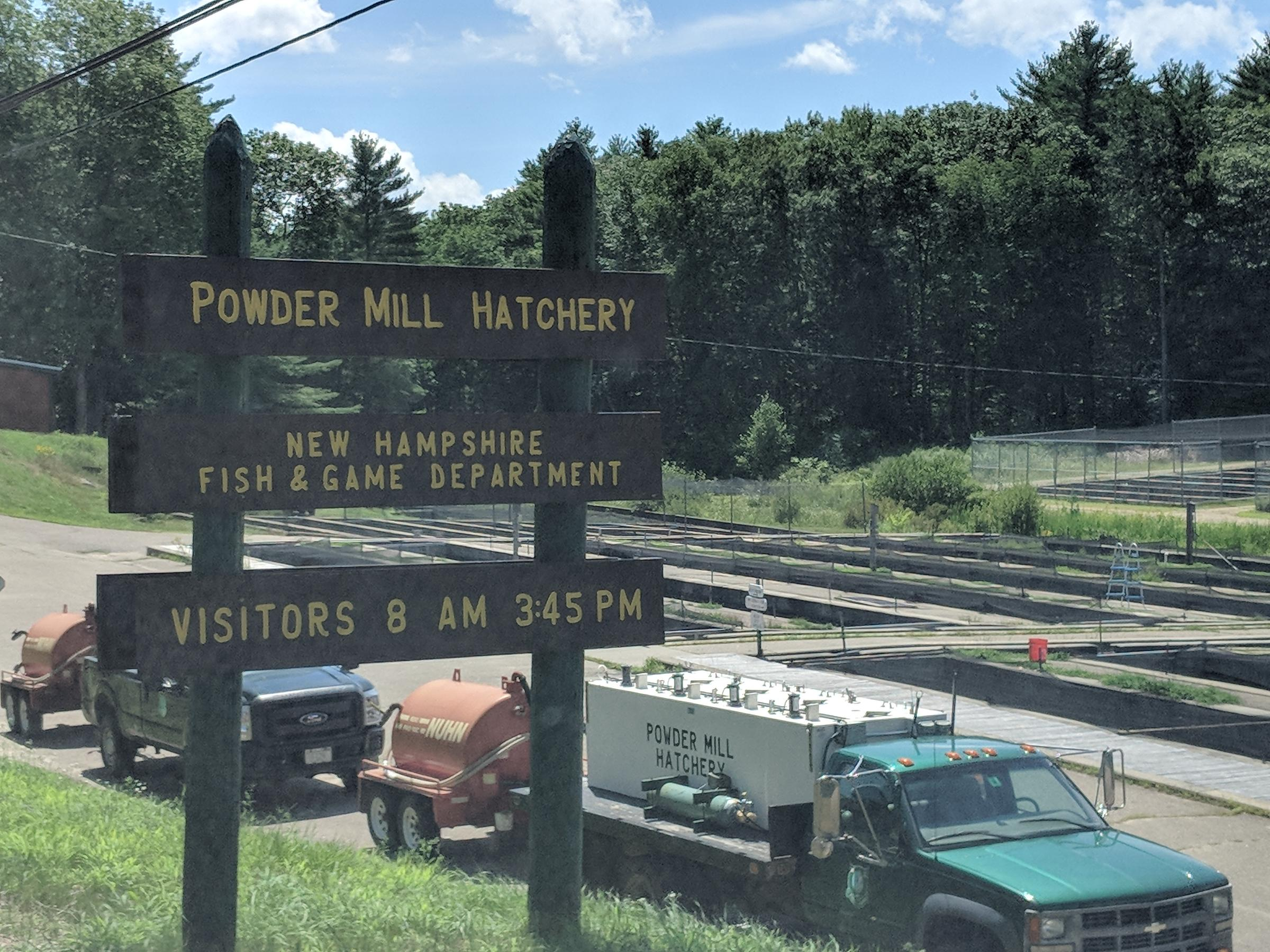 Advocates Sue N.H. Fish & Game Over Alleged Hatchery Pollution