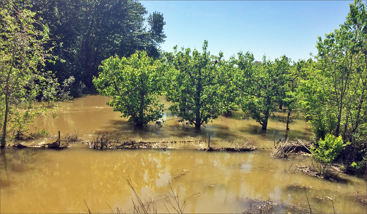 Photos: Preparing For Floods In Northeast Washington   News