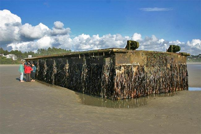 Oregon has already spent more than $300,000 to clean up debris, including this 200-ton dock that washed up near Newport in June.