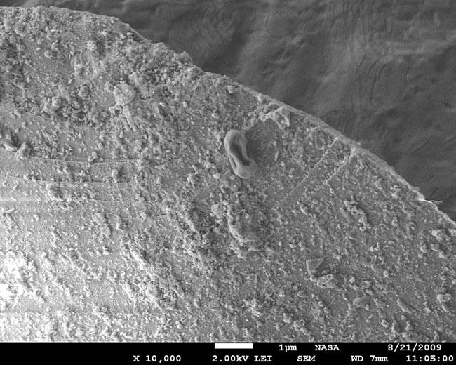 A raisin-shaped bacterial spore sits atop a grain of dust that journeyed from Asia, high in the upper troposphere to the West Coast. It was detected by an observatory in central Oregon.