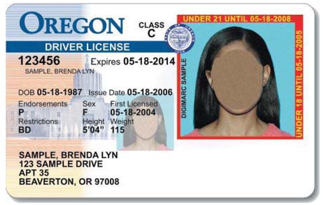 Oregon under-21 driver license sample