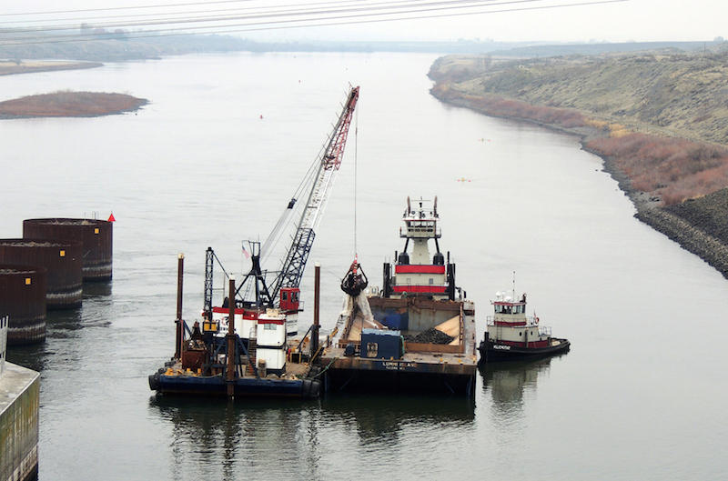 This dredge started work on Monday to remove a shoal near the lock entrance to Ice Harbor Dam on the lower Snake River.