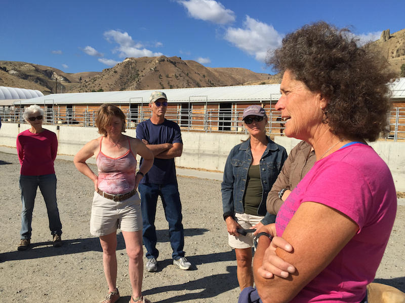 Annie Budiselich conducts a stand-up ranch meeting outside of Wenatchee, Wash., to inform everyone about where the latest fire reports are at from their home valleys and towns.
