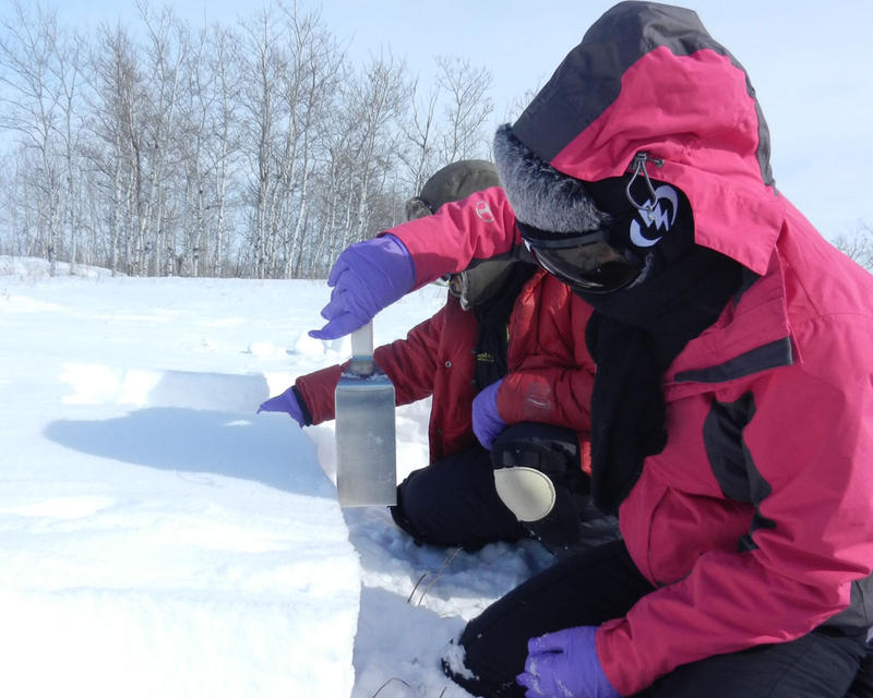 Cheng Dang uses a spatula to collect snow in North Dakota. He was part of a study that looked at actual snow samples from across the United States and Canada compared with computer models predicting how much soot is landing on snowpacks.