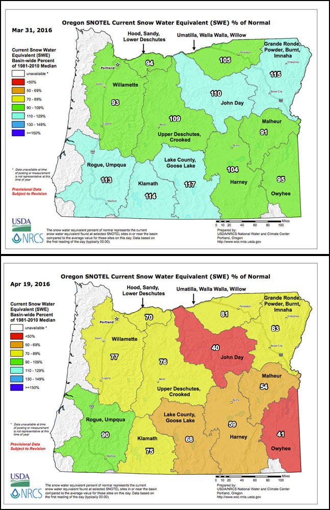 The snow water equivalent as a percent of normal in Oregon has dropped dramatically in the last month.