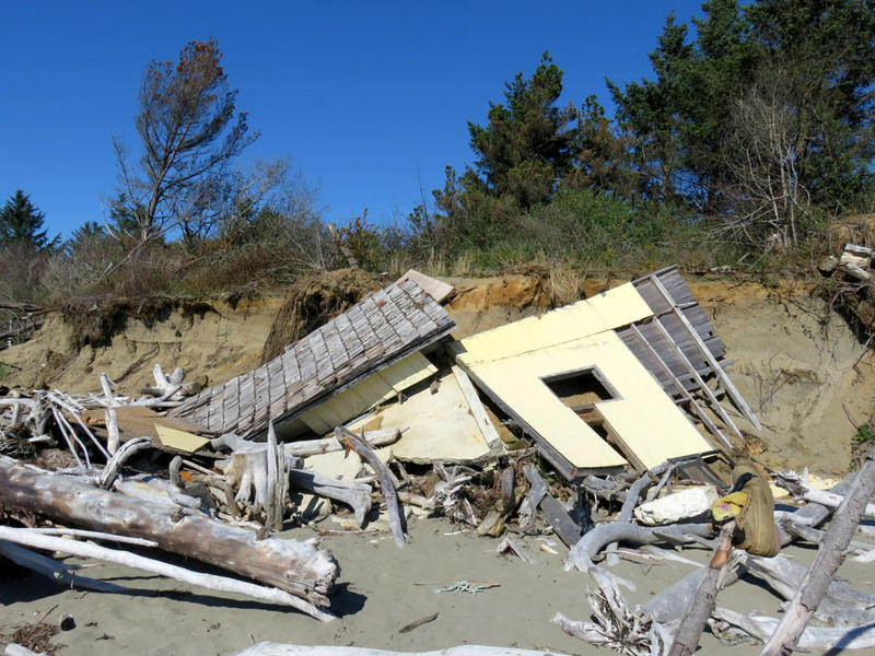 Wreckage of previous erosion victims litters the beach.