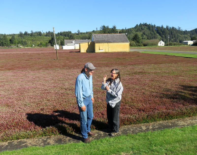 Cranberry growers David Cottrell and Connie Allen want to see more action to defend the valuable cranberry bogs between Grayland and North Cove.
