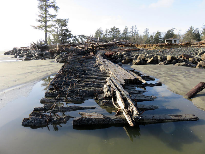 The ''Wandering Wreck of Washaway Beach'' is a big section of the hull of a century-old lumber ship. This wreck has appeared, disappeared and moved with the tides at the mouth of Willapa Bay, Washington, since 2009.