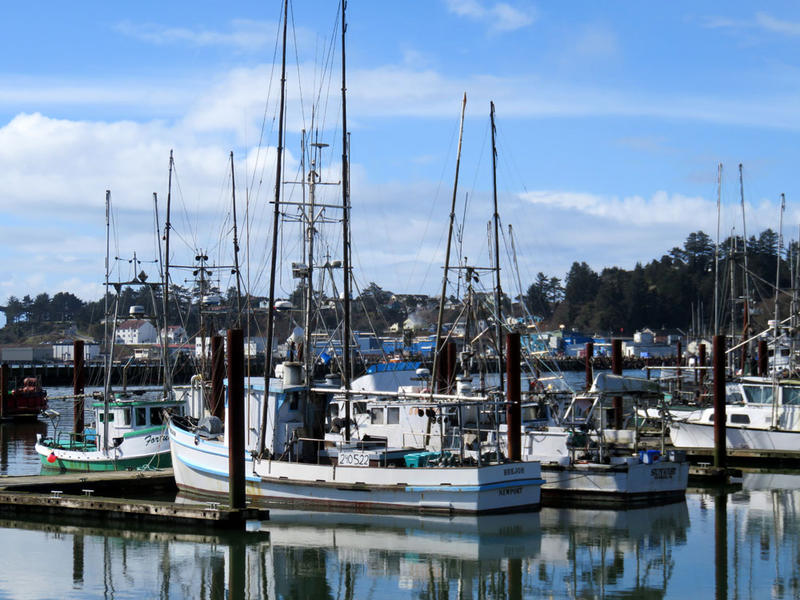 A view of the port at Newport, Oregon. U.S. Census and state licensing data show that the Oregon and Washington state commercial fishing fleet remains overwhelming male-dominated.