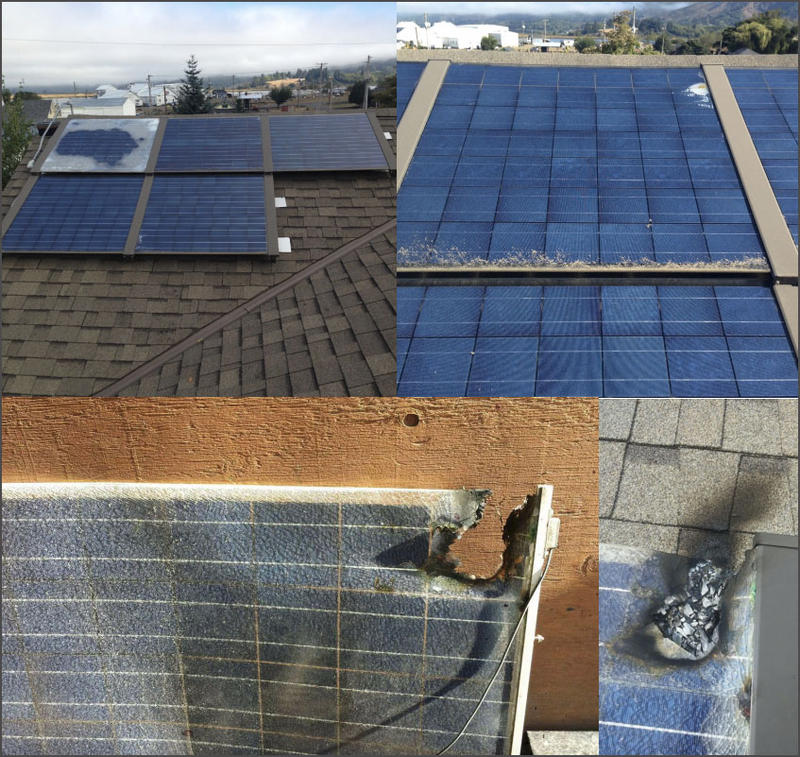 Examples of failed Silicon Energy solar panels, including one that scorched the underlying roof.