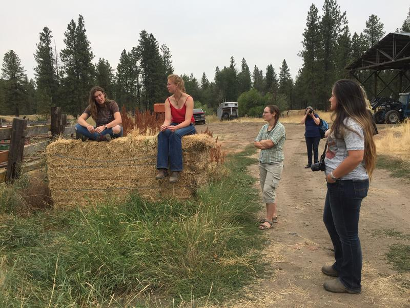 Seven women ranging in age from 23 to 66 listen as Beth Robinette, sitting on the hay bail in brown, explains how she uses holistic management practices on her ranch in Eastern Washington.