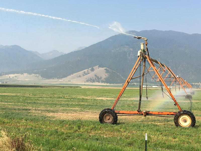 A center pivot beats above a field with some of eastern Oregon's dramatic mountain views in the background.