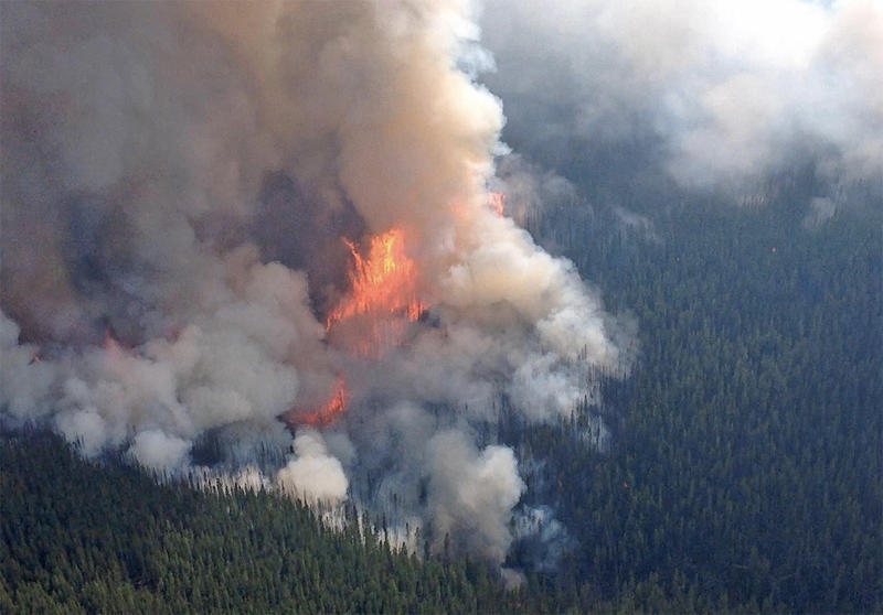 The Diamond Creek fire is burning in north central Washington state approximately 8.5 miles south of the Canadian border. British Columbia is having an ''unprecedented'' wildfire season.