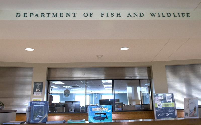 Wdfw director orders changes after reports of sexualized for Washington department of fish and wildlife