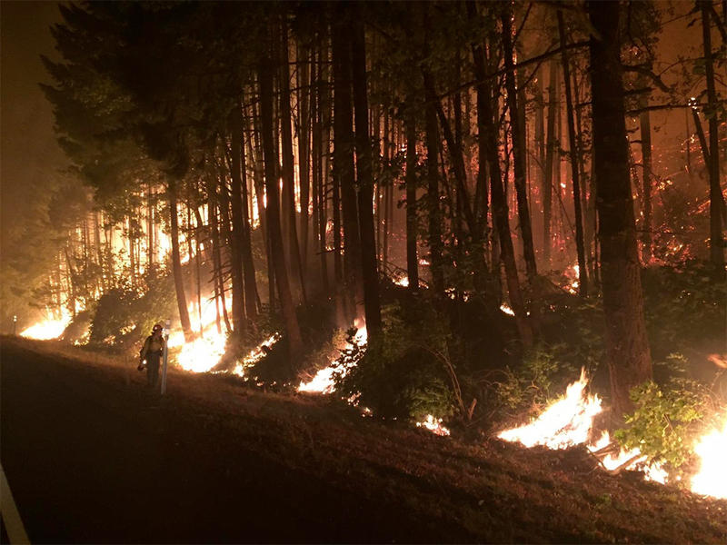 File photo of a night back burn off of I-84 west of Cascade Locks, Oregon, on September 8, 2017.