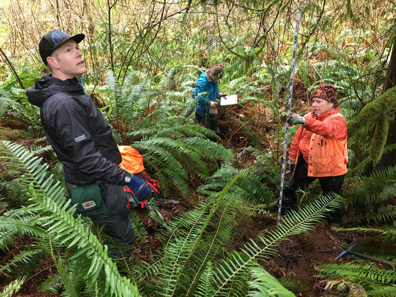 WWU Geology Dept. researchers stand on the Sadie Creek fault on state forestland north of Lake Crescent, Washington. The active fault scarp is unnoticeable to the untutored eye.