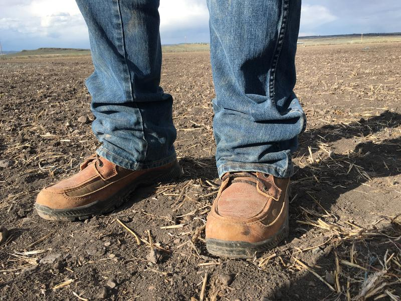 Rancher Wayne Evans stands in one of his parched alfalfa fields near Riley, Oregon. A drought across the West is already putting a strain on ranchers and farmers.