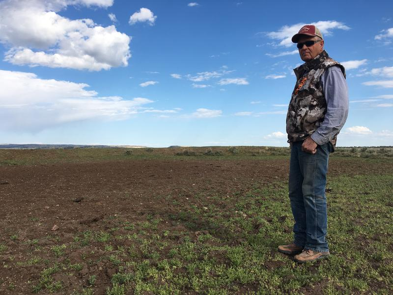 Wayne Evans stands near a water hole that should be full on his ranch near Riley, Oregon. This unassuming depression in the ground is very important, he says. Nearly 50 of them across his spread are nearly all dried up.