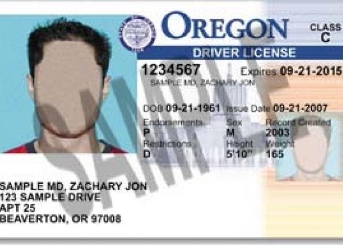 dating without drivers license We know other people who have fought driver's licenses, taxes 6 responses to how do i get married without a license david says: august 8, 2012 at 9:38 pm.