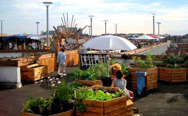 a community effort klunkerkranich gardens open in neukoelln npr berlin. Black Bedroom Furniture Sets. Home Design Ideas