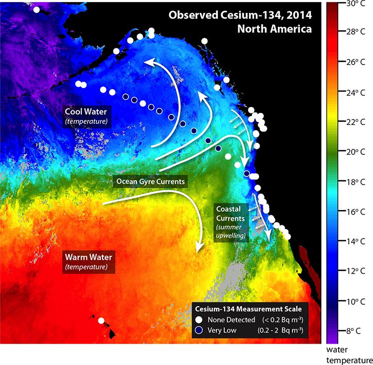 Traces Of Fukushima Radioactivity Detected In West Coast Waters - Japan radiation map 2014