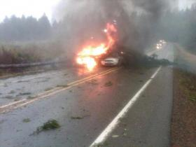 In southwest Washington's Pacific County, a state trooper's car was struck by a tree at the scene of a mudslide on SR 101 on Monday. An adjacent vehicle was also hit and both caught fire. The trooper and the motorist are okay.