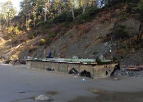 On a return visit this week, the tsunami debris crew found the dock has lodged higher on shore.
