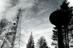 A cell tower in Forest Park, Portland OR
