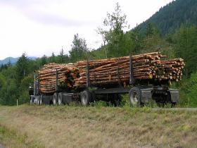 Logging truck near Port Angleles, Washington