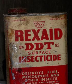DDT, the insecticide that was once widely used and is now banned in the United States, could be contributing to high obesity rates in the United States.
