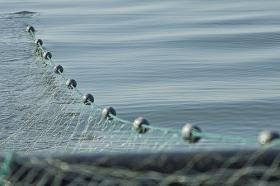 The fees are part of Gov. John Kitzhaber's plan to move non-tribal gill-nets off the Columbia River channel.