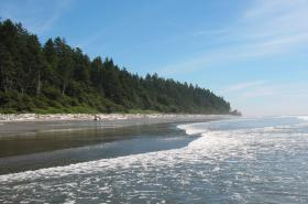 New legislation could put 126,000 acres of Washington's Olympic Peninsula into permanent conservation.