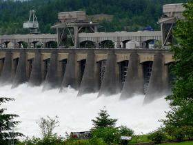 For more than 20 years, salmon advocates and supporters of hydroelectric dams have fought in court over the salmon and Steelhead protection plan.