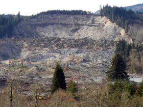 A view of the slope where the Oso landslide took place.