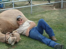 Who could resist cuddling with a camel? Mickey Richards says having Izzy is just like having a dog.