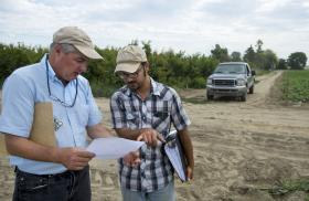Research farmer Alan Schreiber and research assistant Tom Balotte, of Ag Development Group, talk about an ongoing research project in the fields of the 105-acre farm north of Pasco, July 2, 2014. The two have applied for a marijuana growing license so they can become the go-to guys for pest and blight management for pot growers in the state.