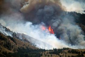 The Obama administration is detailing the toll that the escalating cost of fighting forest fires has had on other projects as it pushes Congress to overhaul how it pays for the most severe fires.