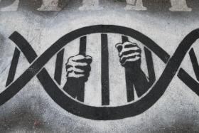 Washington's Supreme Court may have just made it easier for prison inmates to try to get their convictions overturned through DNA testing.